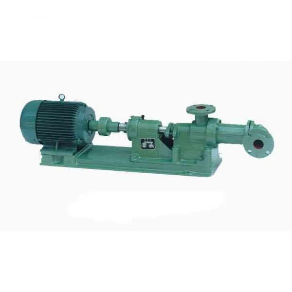 Vickers PV028L1L1AYNMFC + PGP511A0190A Piston Pump PV Series #1 image