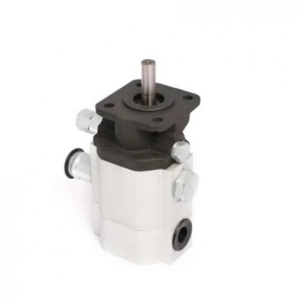 Vickers PV028R1K1T1NCLC4545 Piston Pump PV Series #2 image